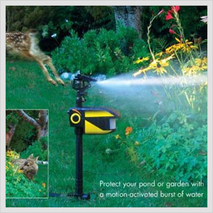 Scarecrow Water Sprinkler.